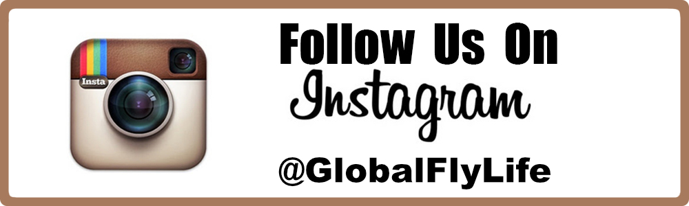 Follow-us-on-Instagram_GlobalFlyLife